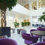 Interior Office Photography, Genzyme Cambridge
